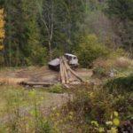 Златоустовском лесничестве