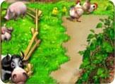 Чудо ферма