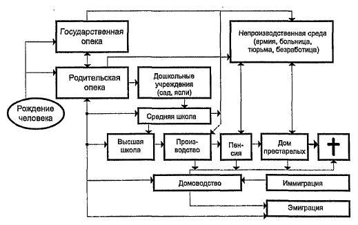 Модель жизни человека